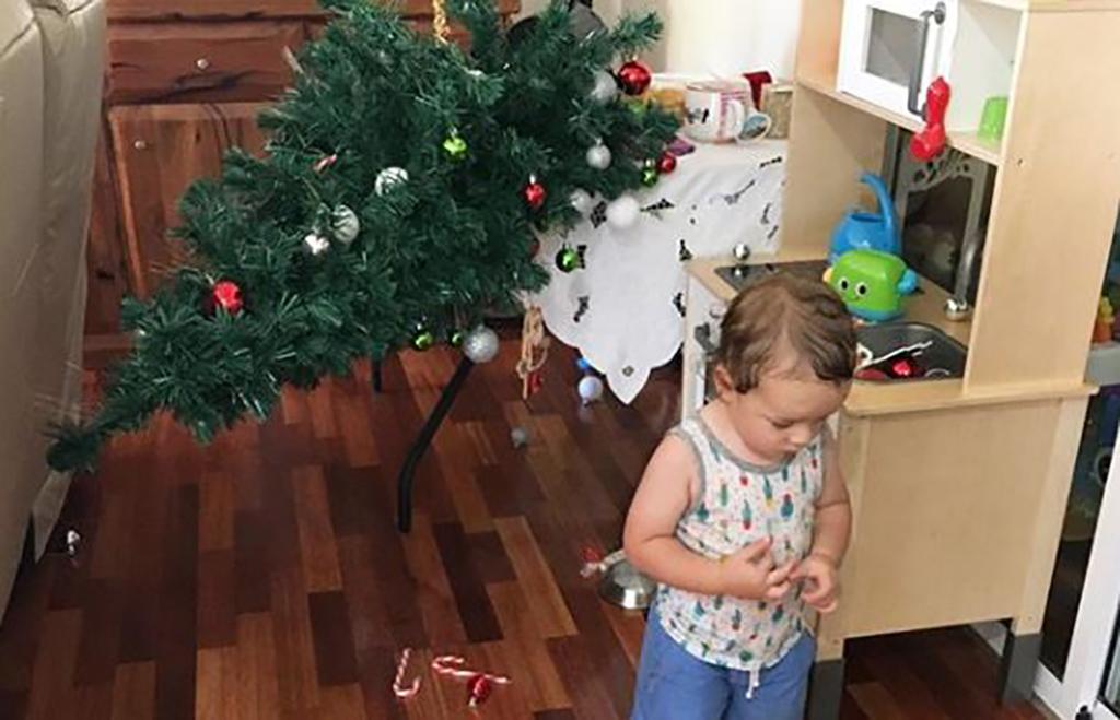 Baby knocks down tree
