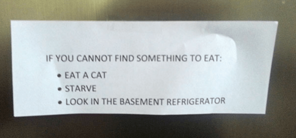 Eat-a-cat-or-dont-99658-54635.jpg