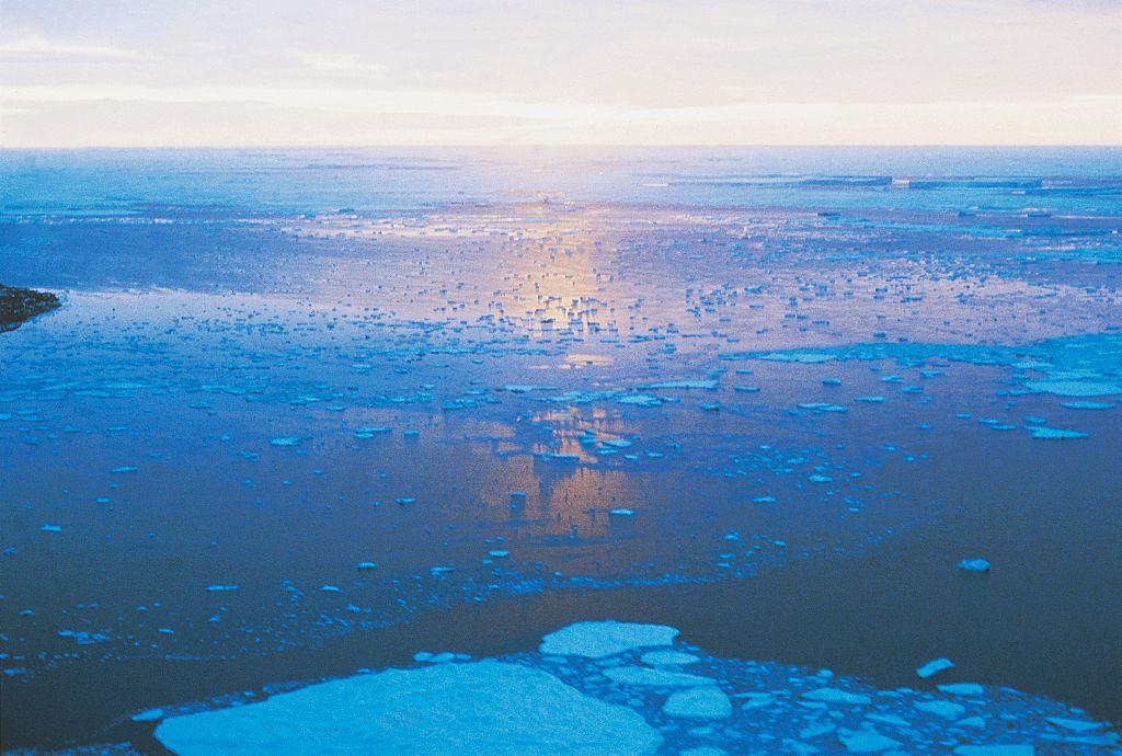 ocean full of glaciers