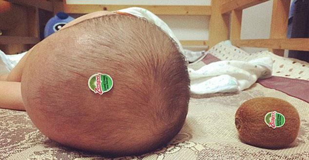 Kiwi-head-kid-30893-14538