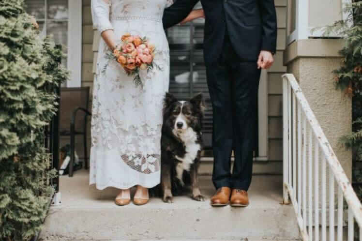 bride-groom-pup-on-stoop.jpg-18321.jpg-69425.JPG