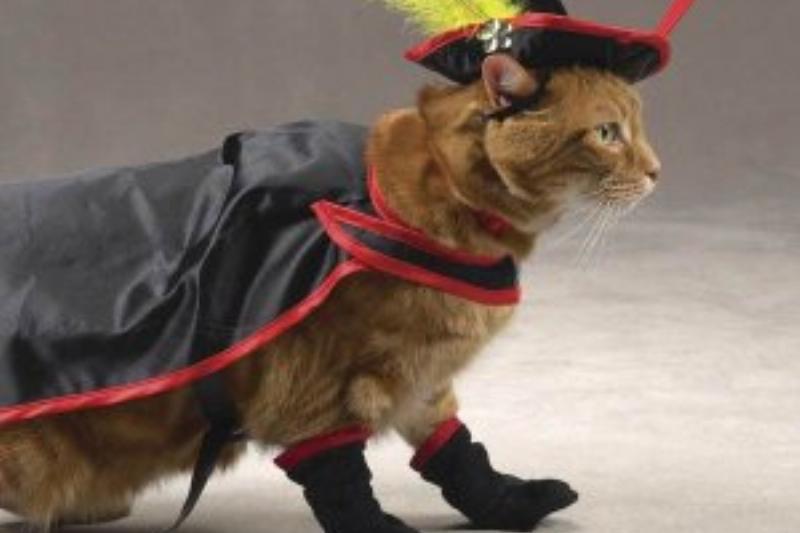 Puss-In-Boots-Cat-Halloween-Costume-62720.jpg