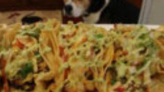 dog-and-tacos-21647-125x125-97420.jpg