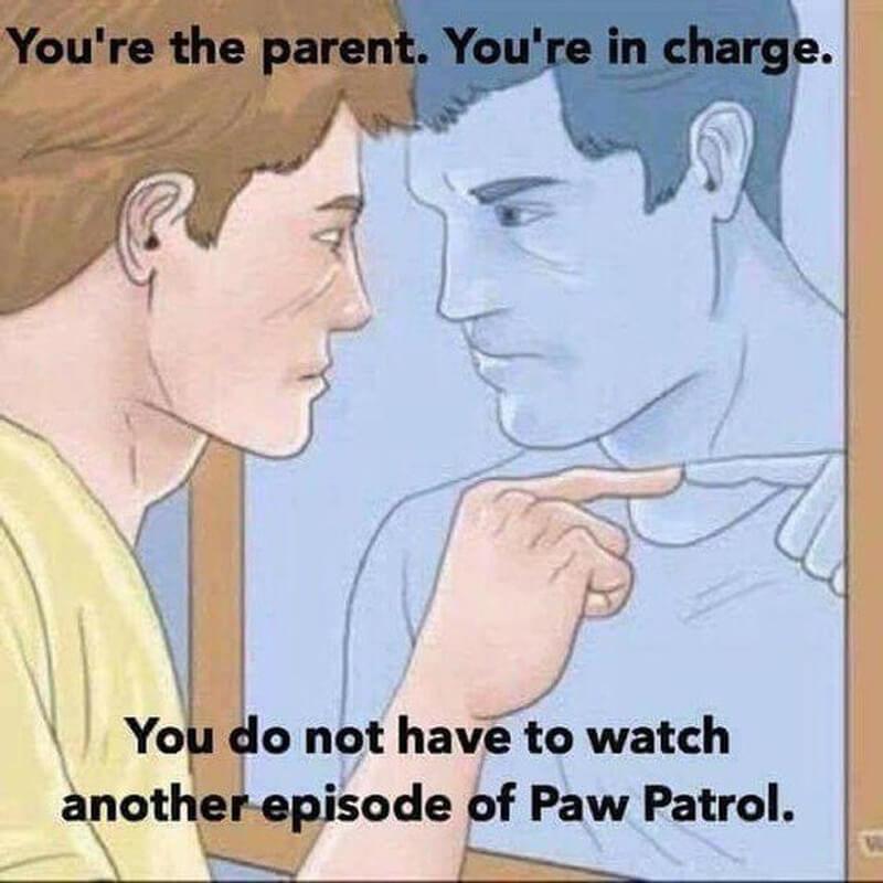 parenting-memes-paw-patrol-55888-78784