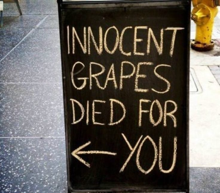 innocent grapes