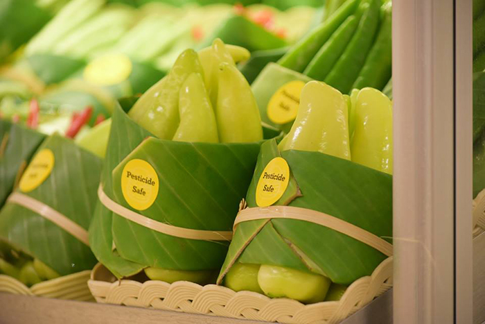 banana leaves 4