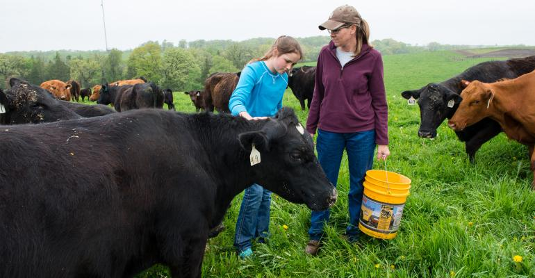 girl and woman feed cows