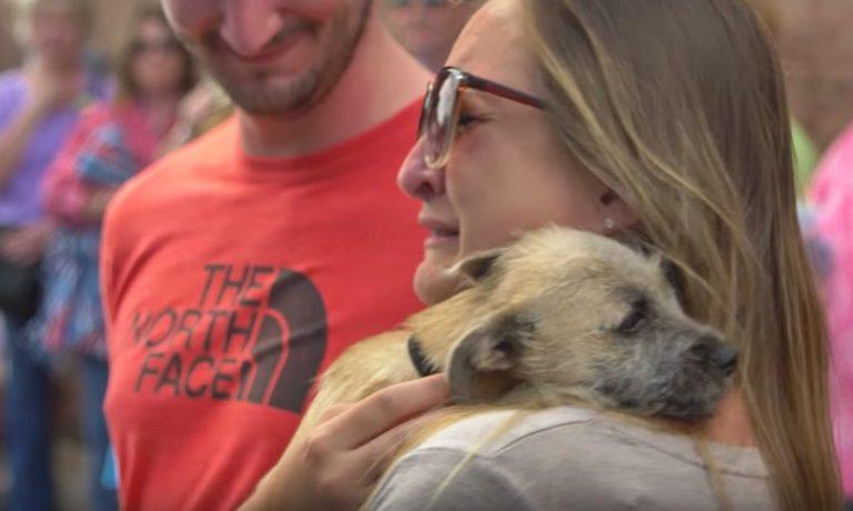 woman crying holding dog