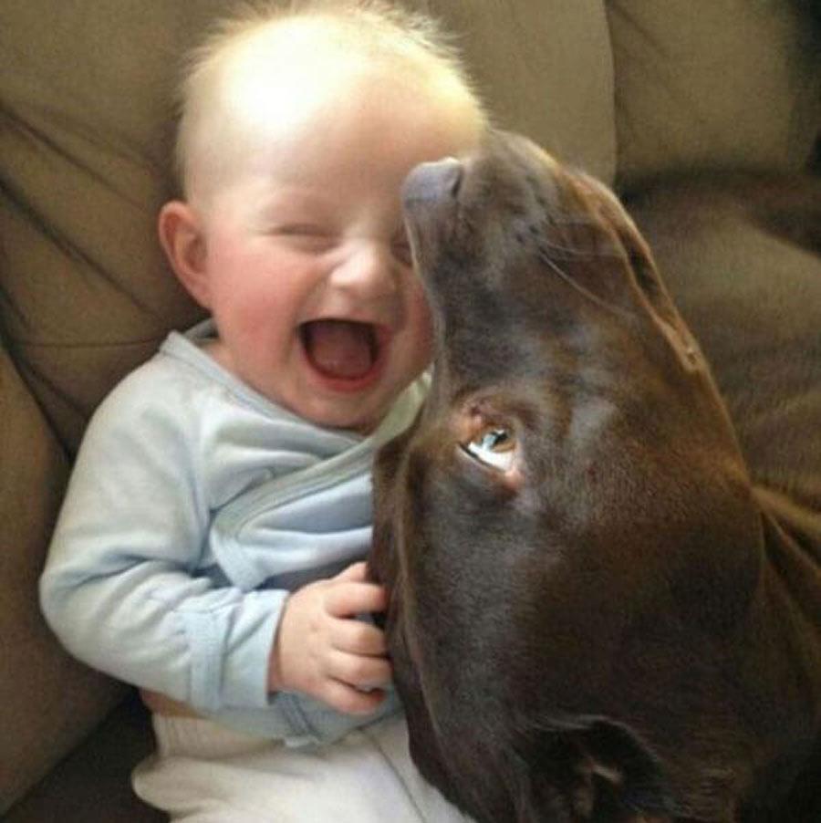 dog-baby-7-95850