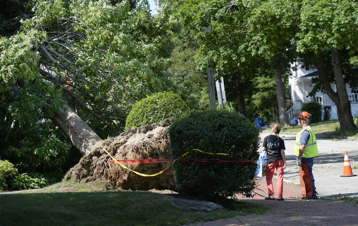 GettyImages -997125930 Storm Cleanup In Portland