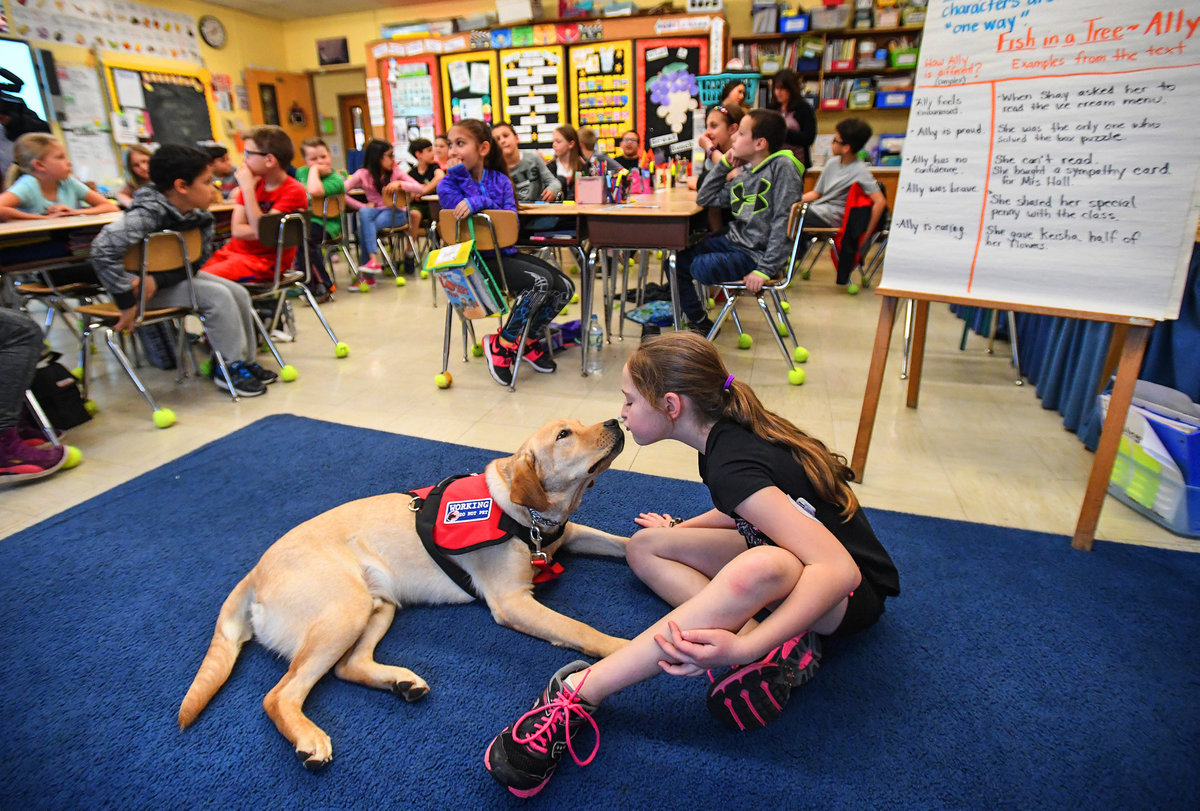 Emma and diabetic alert dog Rufus at elementary school in farmingdale new york