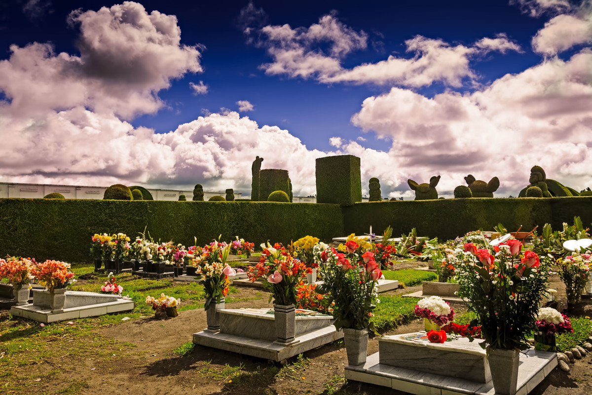 a bunch of flowers in a cemetery