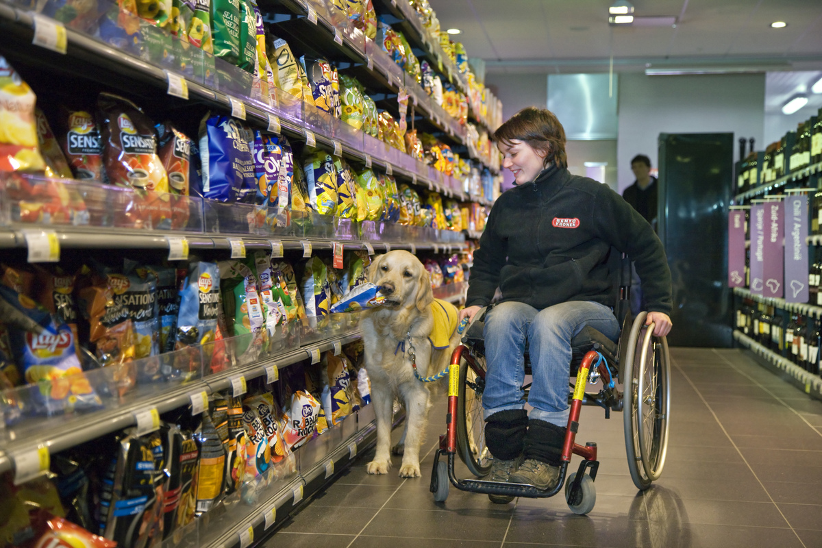 shopping with mobility assistance dog in Belgian supermarket