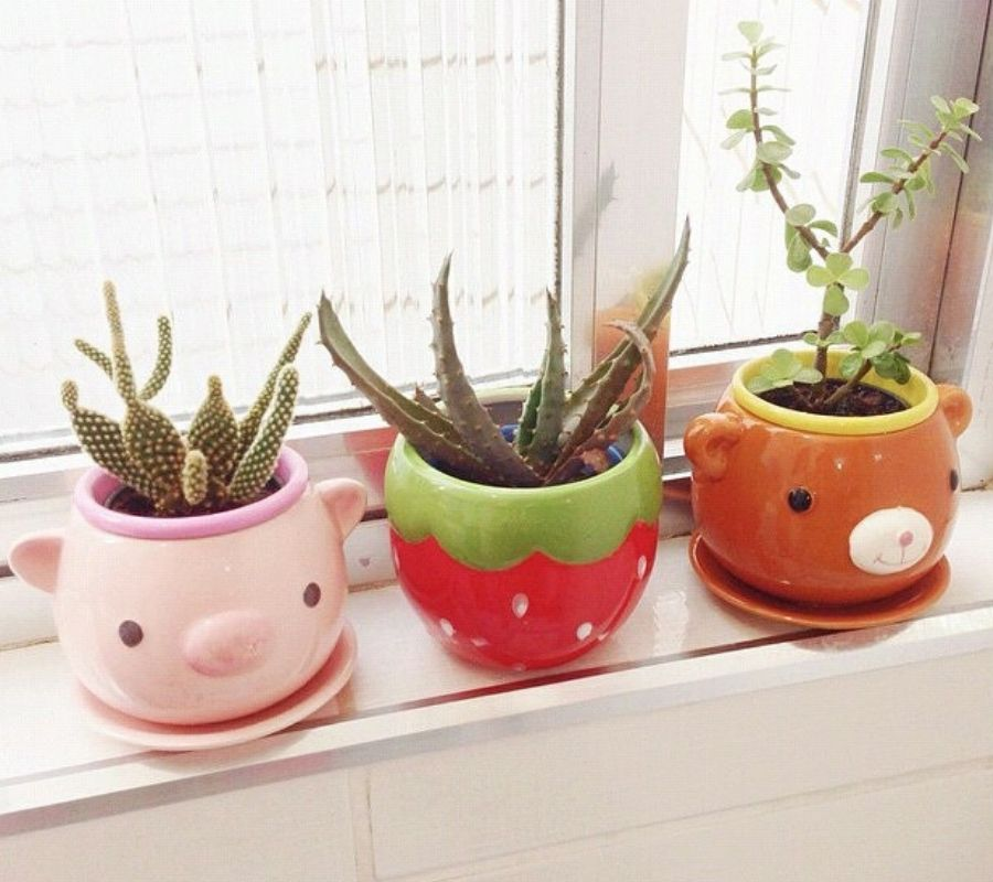animal plant pots cute pig bear strawberry