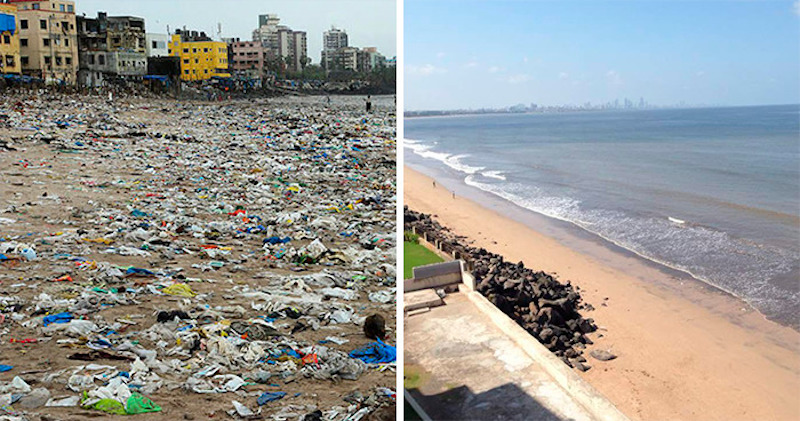 beach clean up major difference