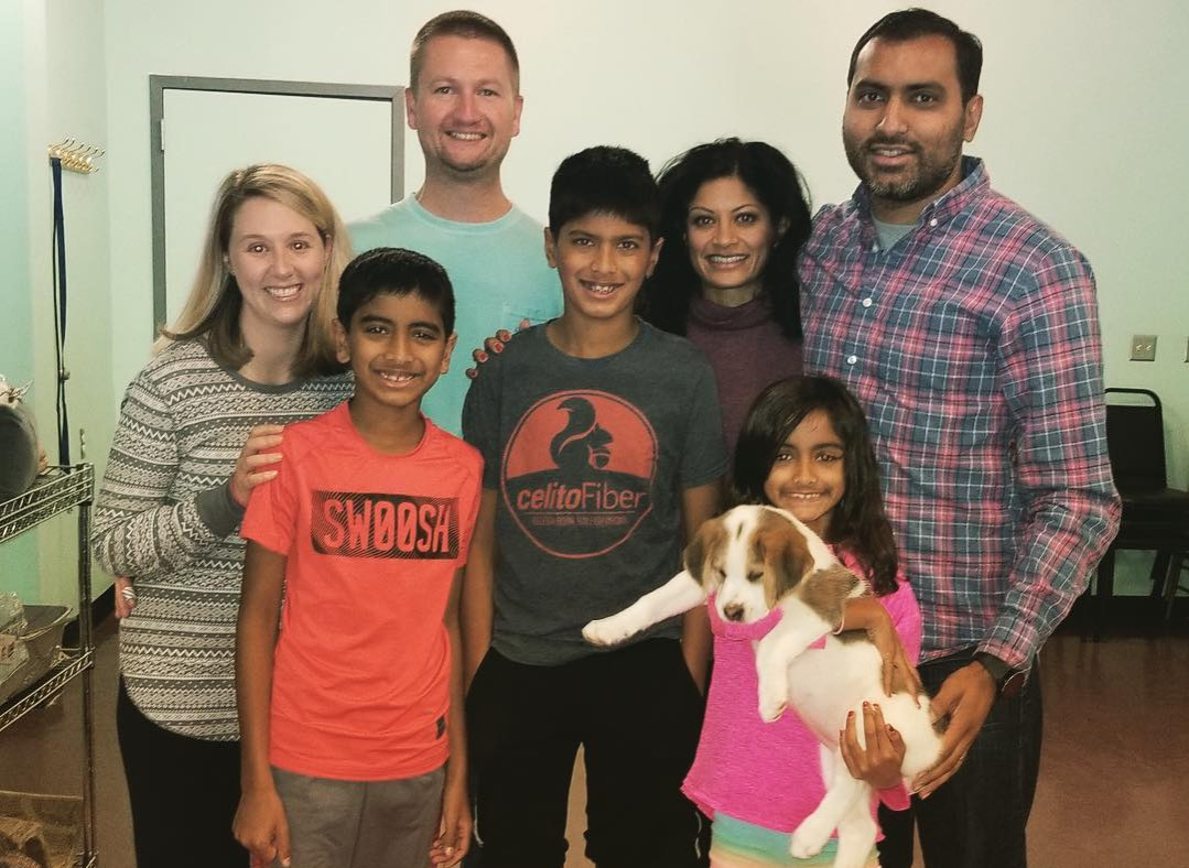 Cow-puppy-gets-adopted-by-a-loving-family-34814