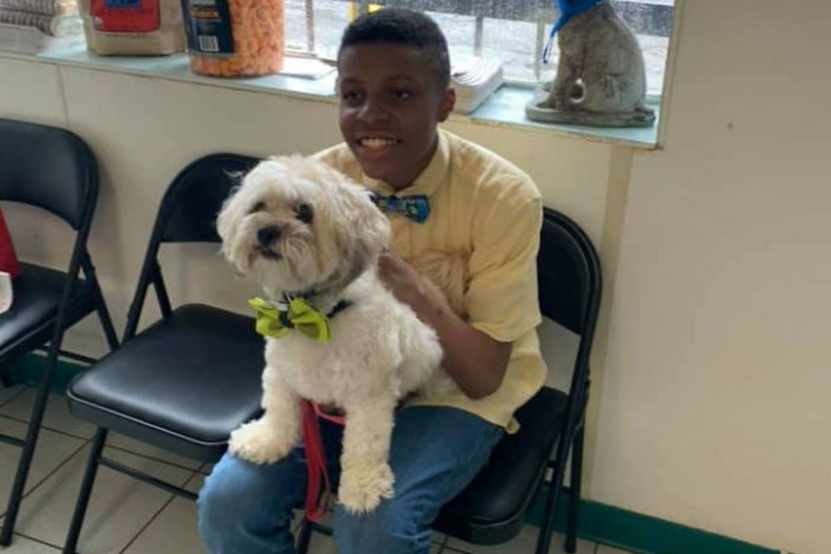 dog with bowtie sitting on the lap of young boy