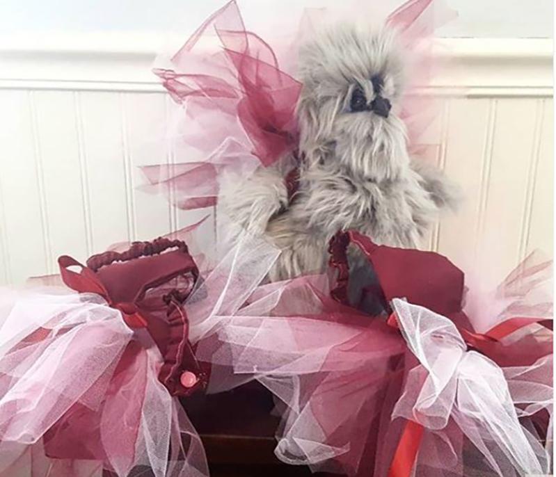 chicken trying on custom-made bridesmaid tutus
