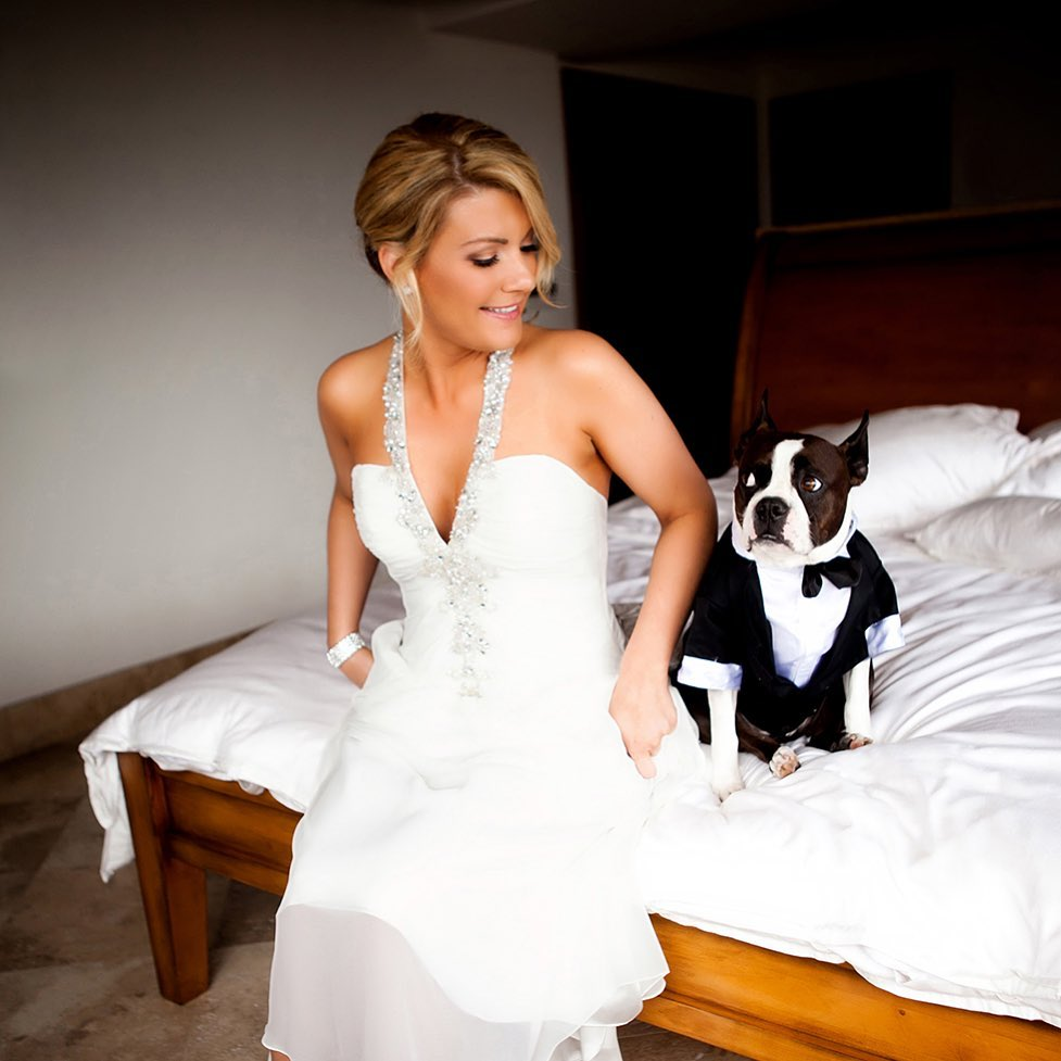 a bride with her dog in a tuxedo
