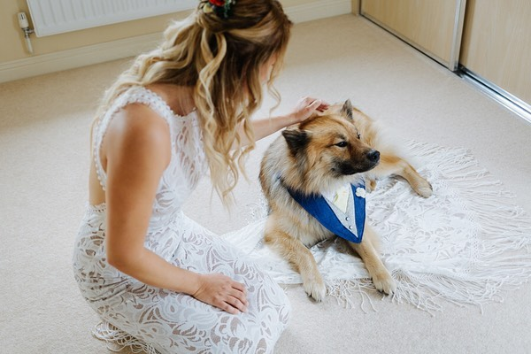 a bride with her dog in a tuxedo collar