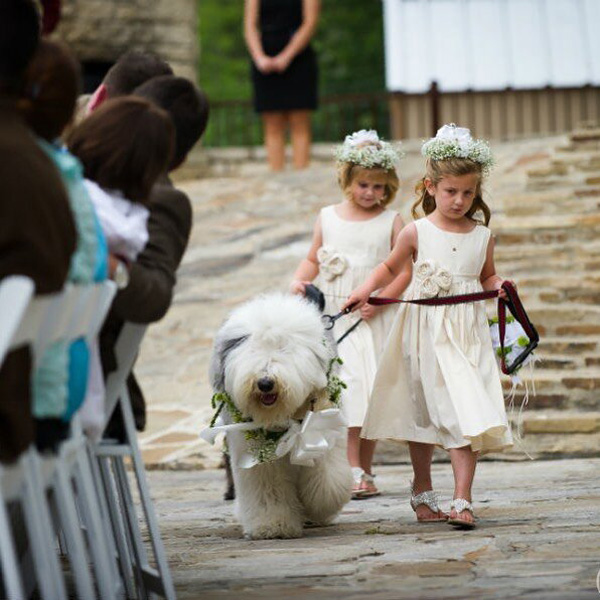 flower girls walk a dog down the aisle