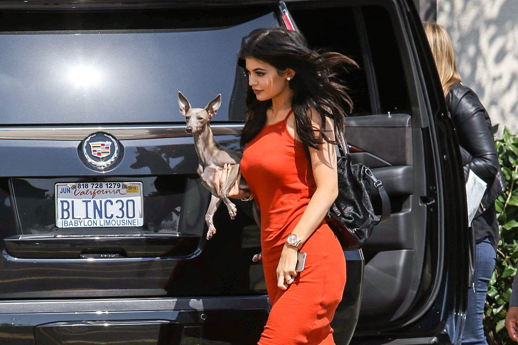 kylie jenner holding her italian greyhound in front of a black car