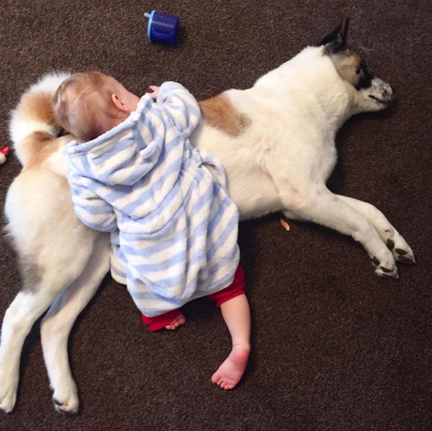 nap-time.jpg-44804