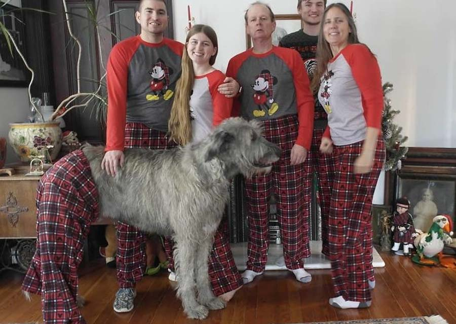 family and dog, all wearing PJs