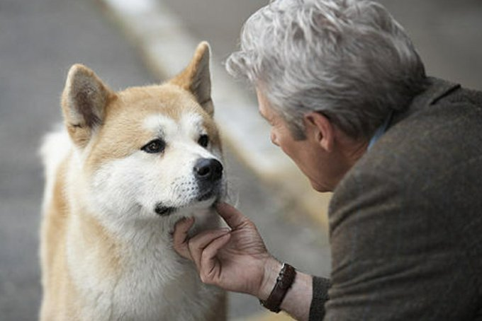 owner and Hachi with emotional face