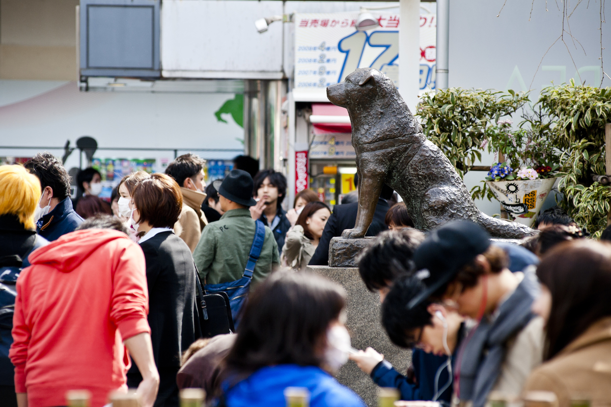 Hachi statue with people