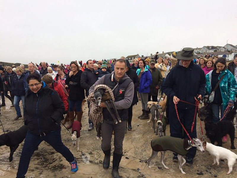 A crowd of people and their dogs follow a man as he carries his sick dog