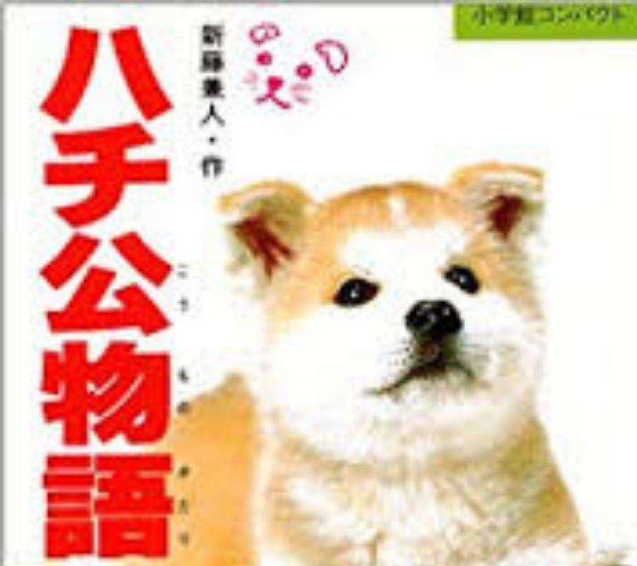 Hachi story became book in Japane