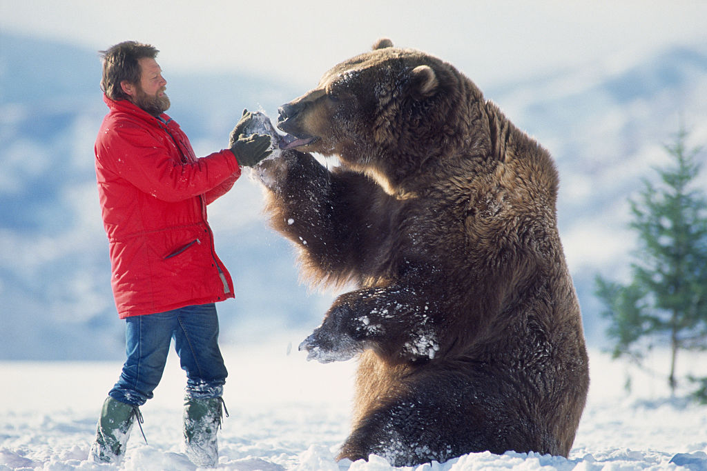 bear trainer doug seus with bart the bear in the snow