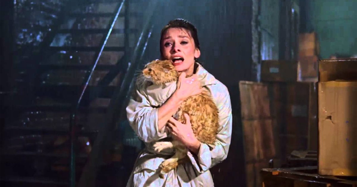 orangey the cat held by audrey hepburn in breakfast at tiffany's