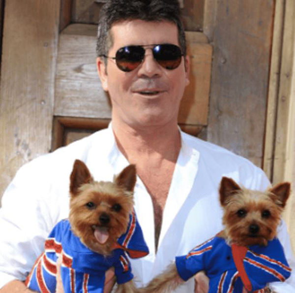 simon-cowell-dogs
