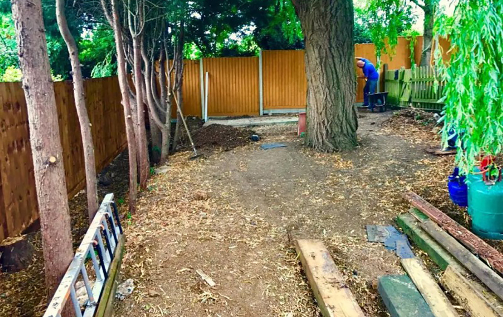 Chris' backyard