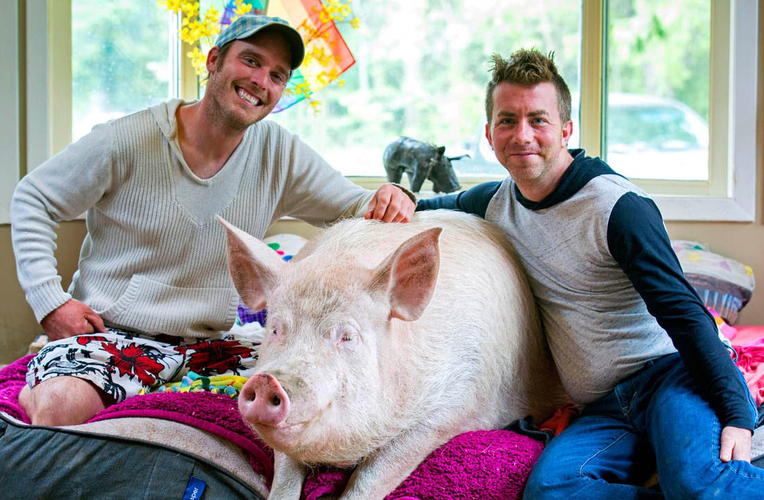 Derek, Steve, and Esther sit on the pig's bed