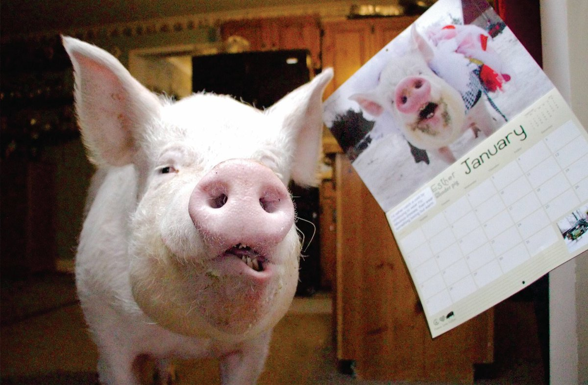 Esther poses next to a calendar of herself.