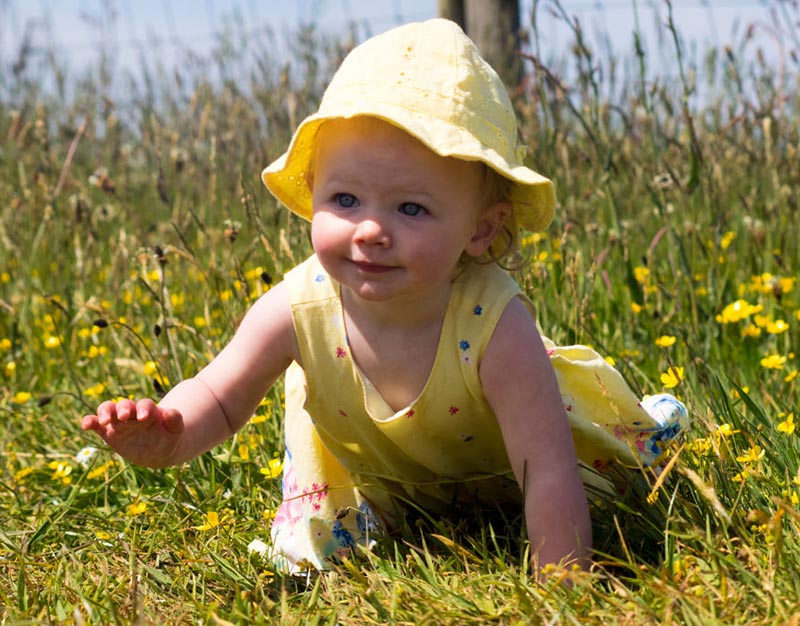 A baby girl crawls in a feild of flowers.