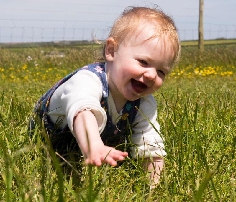 A baby crawls in a field of tall grass.