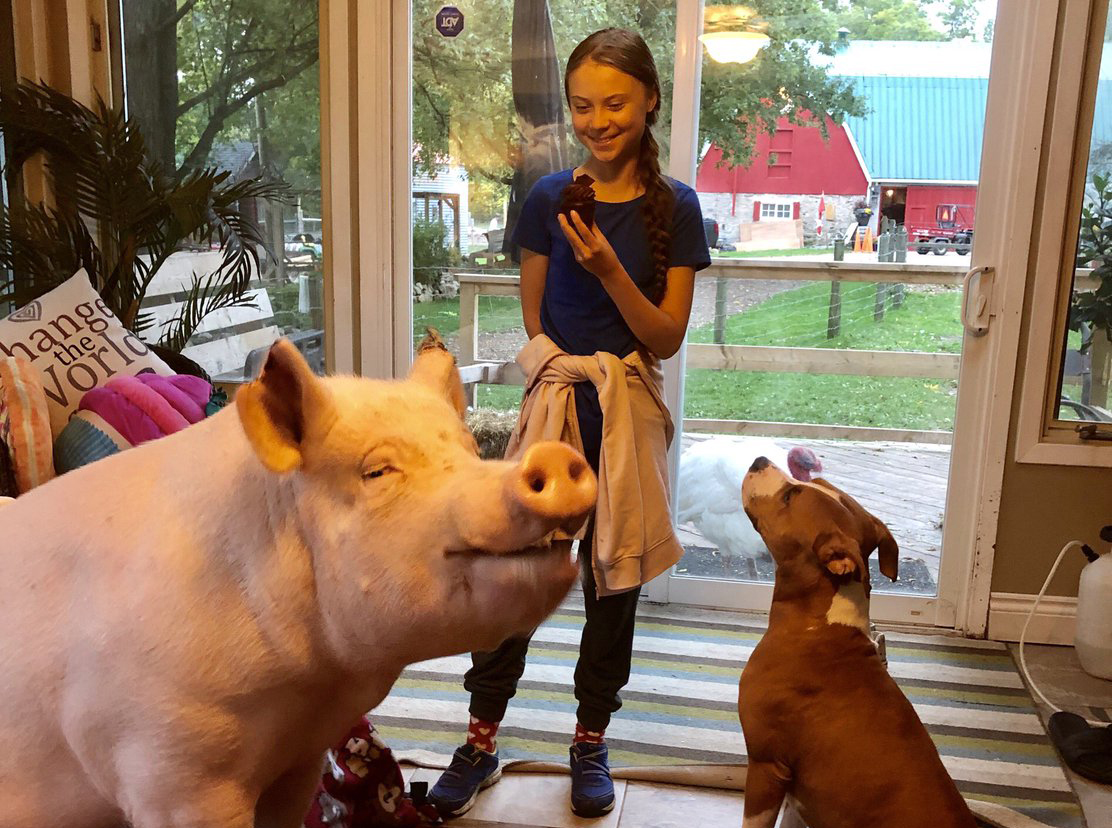 Greta meets Esther the pig and other animals on the Happily Ever Esther Sanctuary.