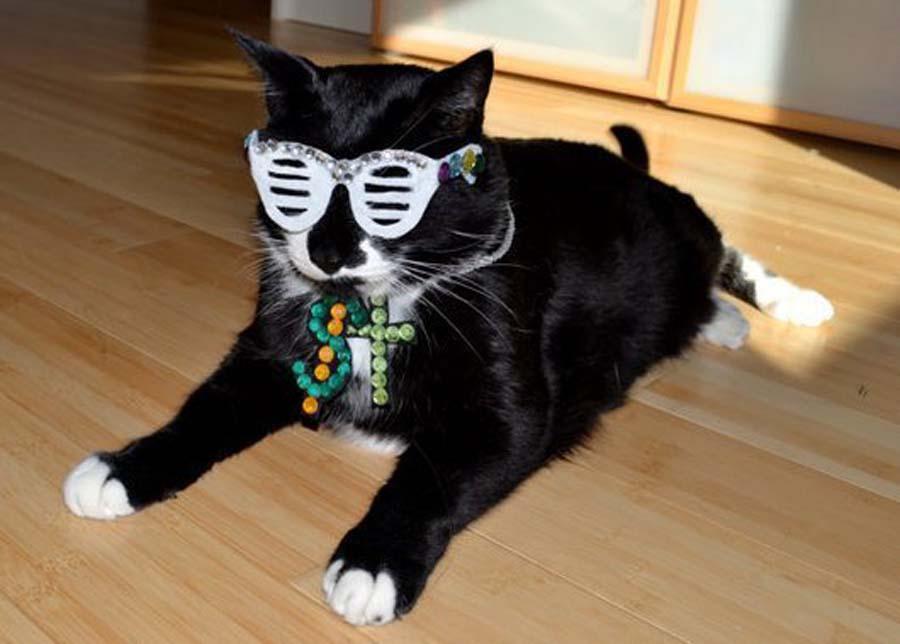 Kanye-West-Cat-Halloween-Costume-86202
