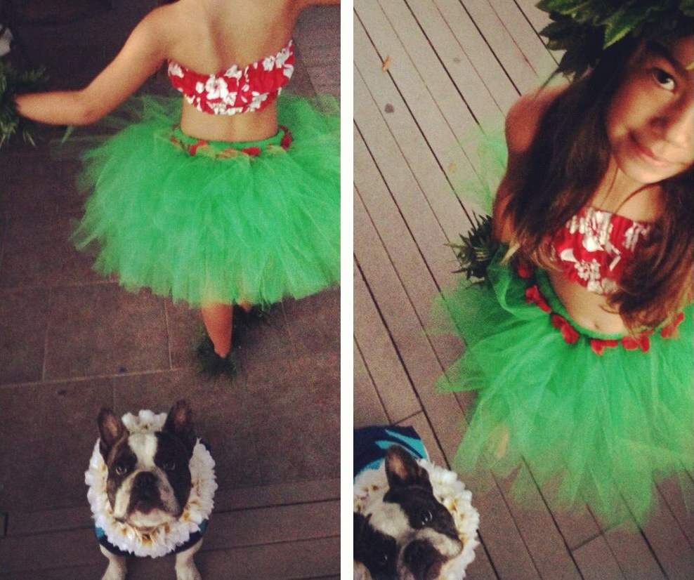 Owner dressed as Lilo and dog dressed as Stitch