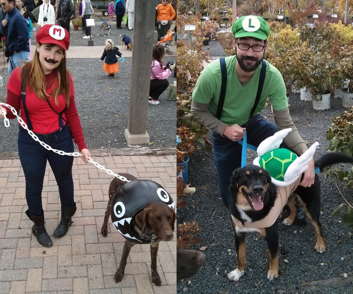 Mario and Luigi costume with owners' dogs as a chain chomp and green shell