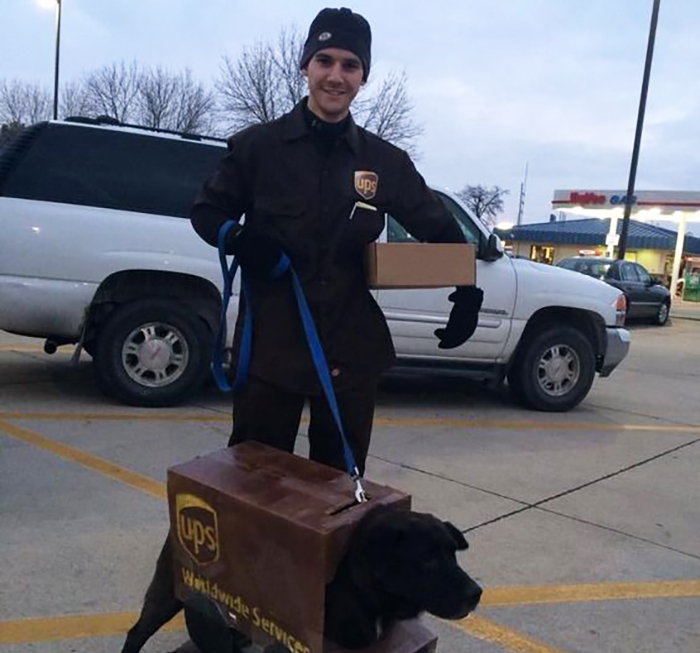 Halloween costume, owner as postman, dog as UPS truck