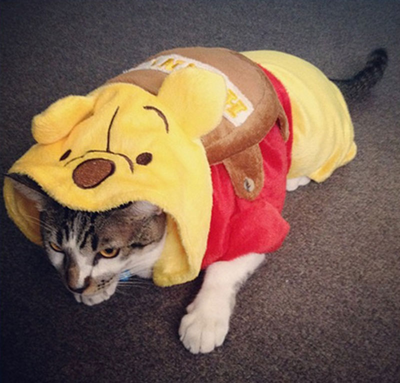 Winnie-the-Pooh-Cat-Halloween-Costume-46628