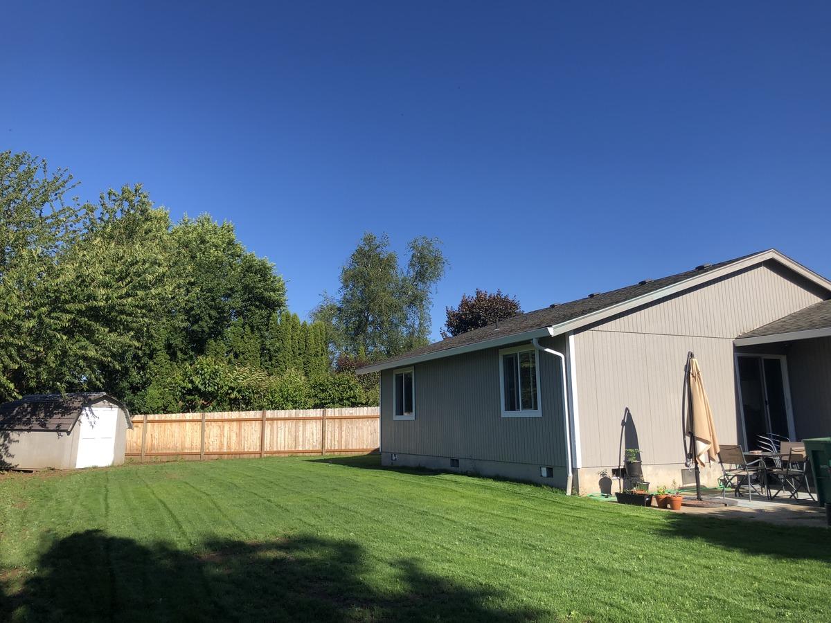 backyard8-86360