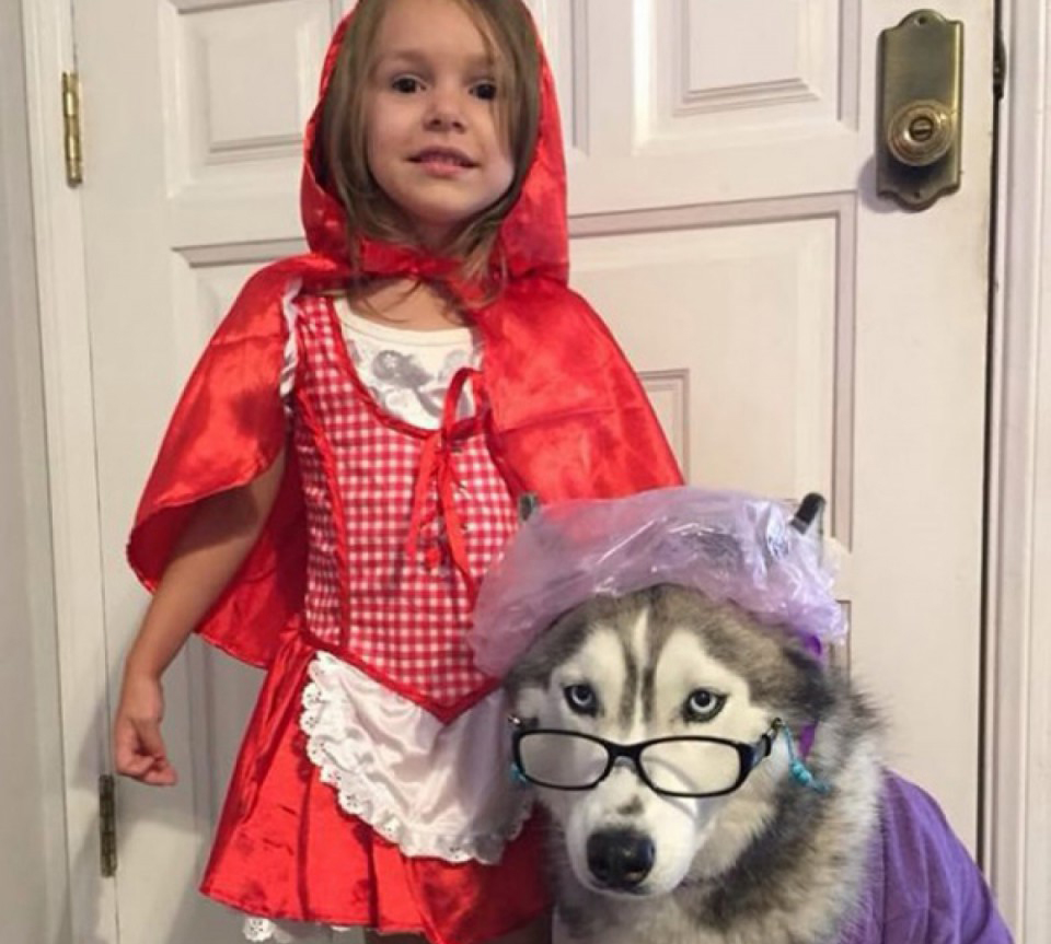 Little girl dresses as Little Red Riding Hood with dog as Big Bad Wolf