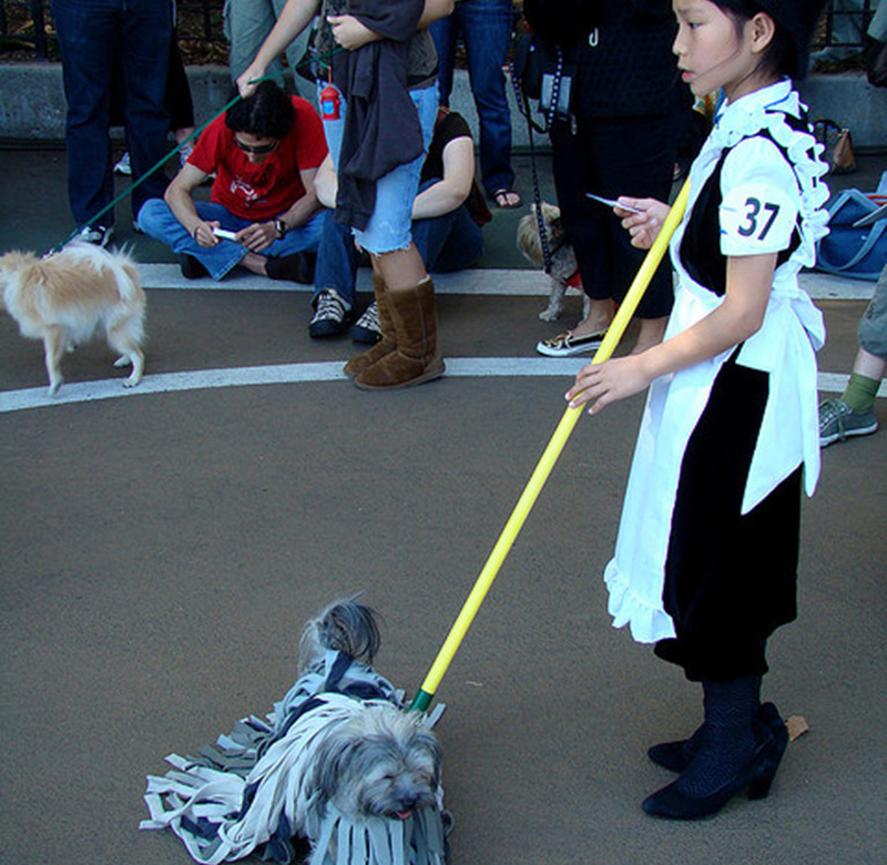 Dog and owner dressed as mop and maid