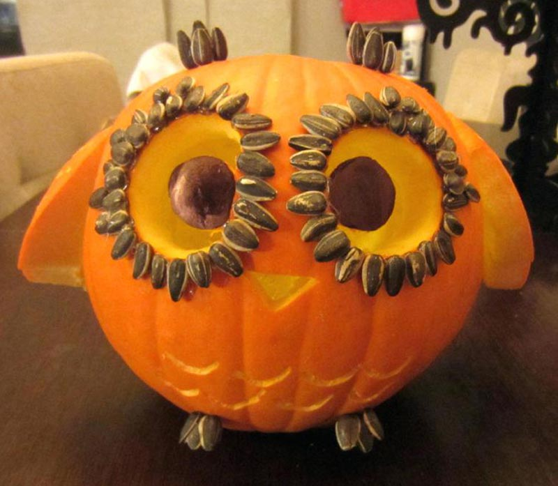 A round pumpkin is carving to look like an owl.